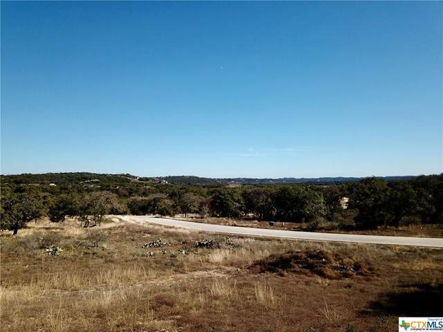 118 Cartama, Spring Branch, TX 78070 (MLS #429638) :: Vista Real Estate