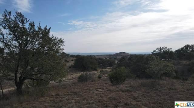 65 Cypress View Drive Trail, Johnson City, TX 78636 (MLS #429666) :: Vista Real Estate