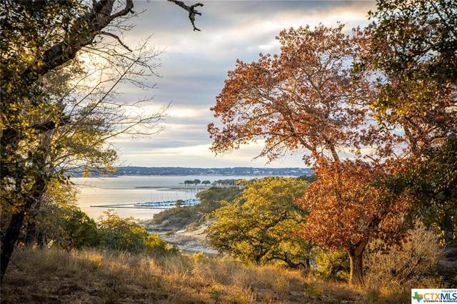 420 Simon Crest, Canyon Lake, TX 78133 (MLS #429669) :: Kopecky Group at RE/MAX Land & Homes