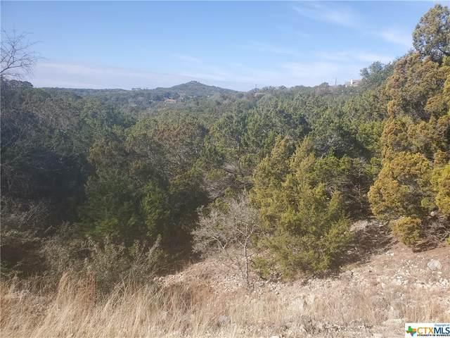 1620 Moerike Road, Canyon Lake, TX 78133 (MLS #429670) :: Kopecky Group at RE/MAX Land & Homes