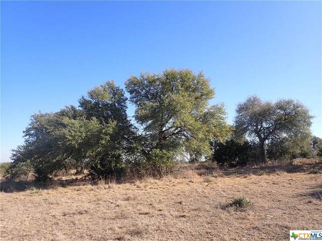 TBD N Us Highway 281 Highway, Lampasas, TX 76550 (#429874) :: Realty Executives - Town & Country