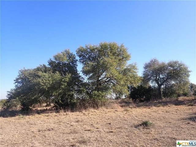 TBD N Us Highway 281 Highway, Lampasas, TX 76550 (MLS #429874) :: The Myles Group