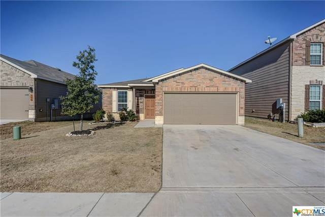 162 Texas Thistle, New Braunfels, TX 78130 (MLS #429878) :: The Zaplac Group