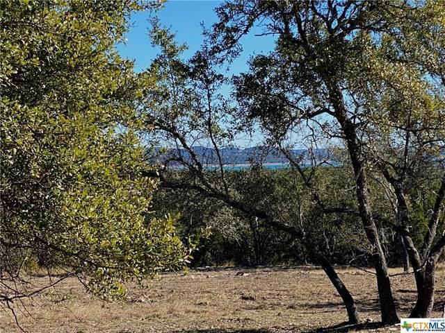 1326 Ensenada Drive, Canyon Lake, TX 78133 (MLS #430069) :: Vista Real Estate