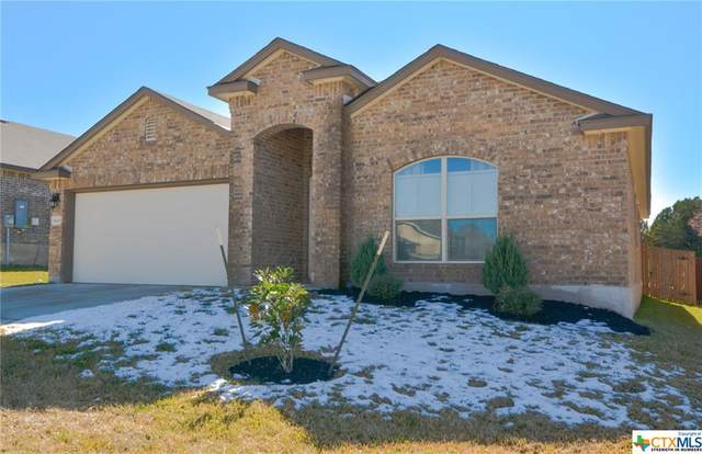 810 Hobby Road, Copperas Cove, TX 76522 (MLS #430100) :: Kopecky Group at RE/MAX Land & Homes
