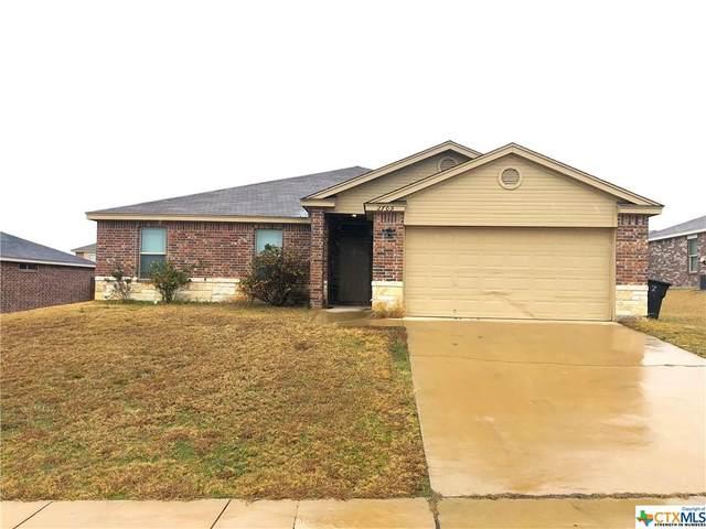 2709 Hector Drive, Killeen, TX 76549 (MLS #430121) :: Brautigan Realty