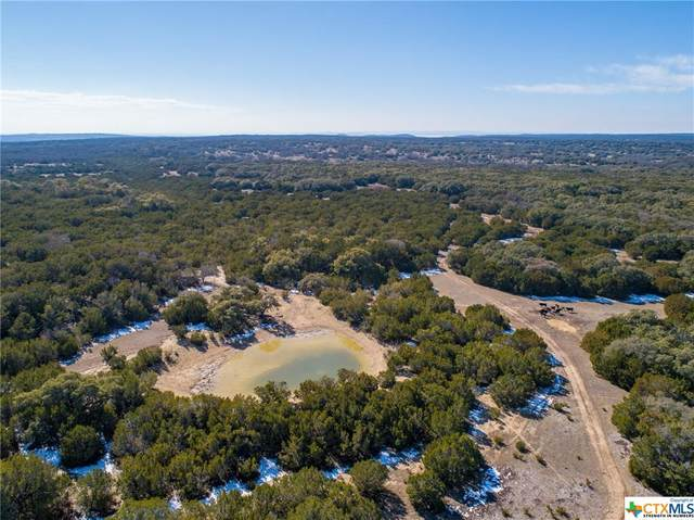 10544 County Road 108, Burnet, TX 78611 (#430135) :: Realty Executives - Town & Country