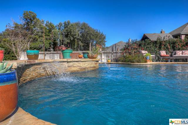 550 Mission Hill Run, New Braunfels, TX 78132 (MLS #430152) :: The Zaplac Group