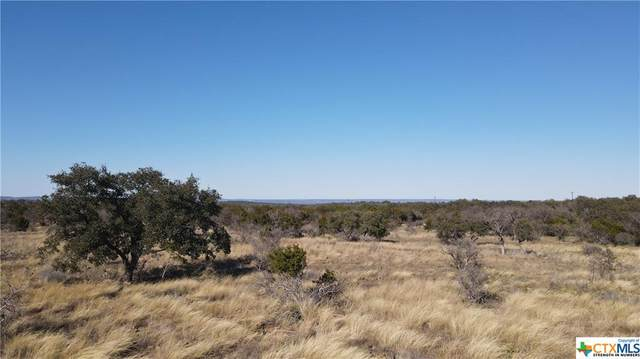 35 Indian Ridge Ridge, Round Mountain, TX 78663 (MLS #430286) :: Vista Real Estate