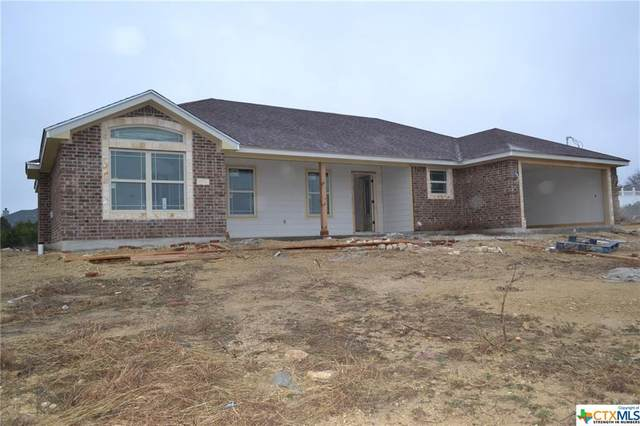 6008 County Road 3300, Kempner, TX 76539 (#430379) :: Realty Executives - Town & Country