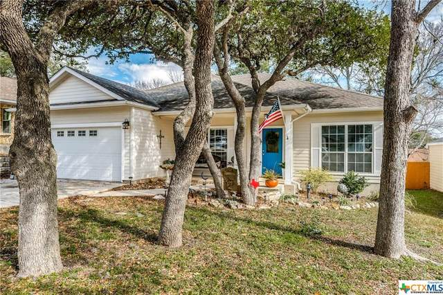 2021 North View Drive, San Marcos, TX 78666 (#430380) :: Realty Executives - Town & Country