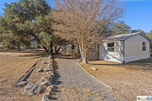 105 Moss Rock Drive, Johnson City, TX 78636 (#430384) :: Realty Executives - Town & Country