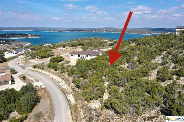 2411 Triple Peak Drive, Canyon Lake, TX 78133 (MLS #430561) :: Texas Real Estate Advisors
