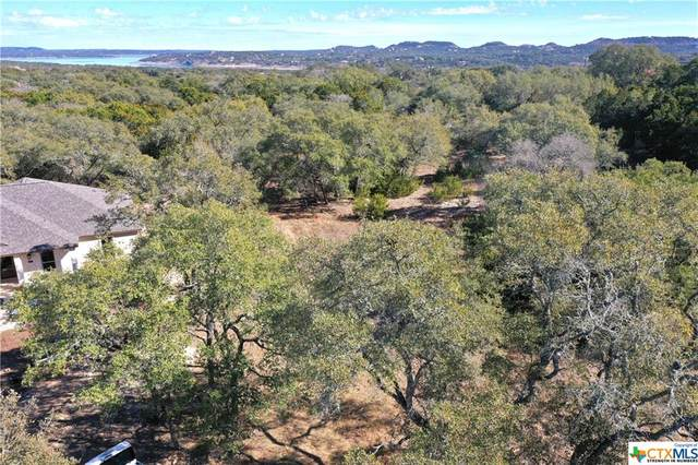 1670 Bella Vista, Canyon Lake, TX 78133 (MLS #430565) :: RE/MAX Family