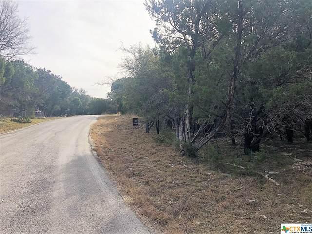523 Shady Oak Lane, Canyon Lake, TX 78133 (MLS #430780) :: RE/MAX Family