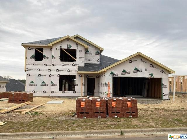 1315 Justice Drive, Copperas Cove, TX 76522 (MLS #430787) :: The Real Estate Home Team