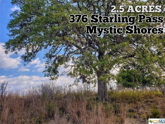 376 Starling Pass, Spring Branch, TX 78070 (MLS #431015) :: Kopecky Group at RE/MAX Land & Homes