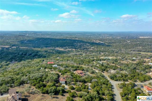 10019 Eagles View, Spring Branch, TX 78070 (MLS #431225) :: Kopecky Group at RE/MAX Land & Homes