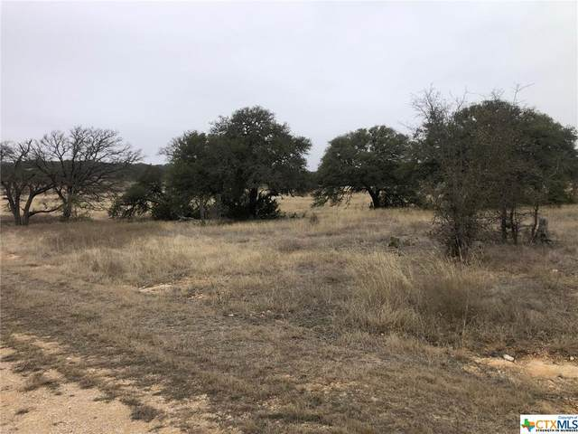 TBD S Waterbuck Way, Lampasas, TX 76550 (MLS #431266) :: The Real Estate Home Team