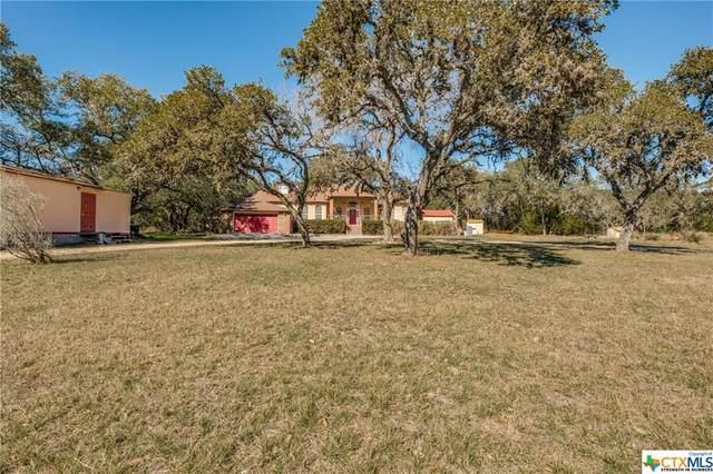 300 Pioneer Trail, San Marcos, TX 78666 (MLS #431285) :: Texas Real Estate Advisors