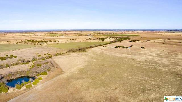 TBD Tract 7-131 County Road 131, Gatesville, TX 76528 (MLS #431580) :: RE/MAX Family