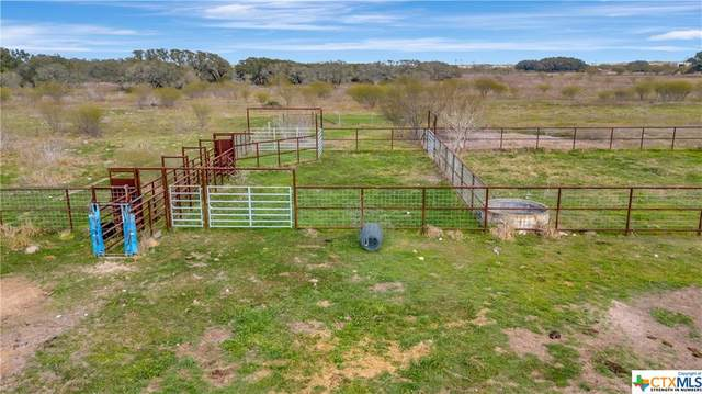 6038 N Us Highway 59 Highway, Goliad, TX 77963 (MLS #431750) :: RE/MAX Land & Homes