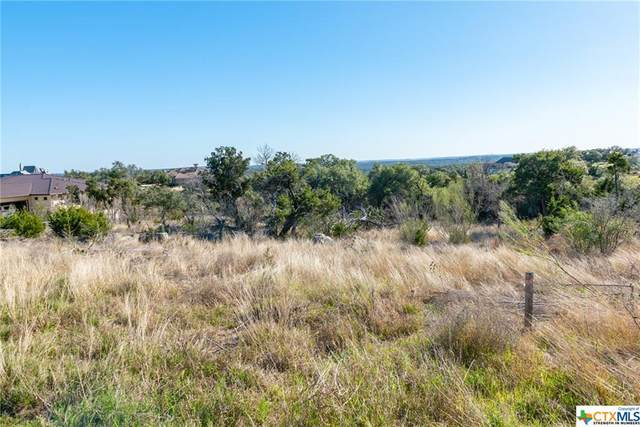 5813 Copper Valley, New Braunfels, TX 78132 (MLS #431774) :: Berkshire Hathaway HomeServices Don Johnson, REALTORS®