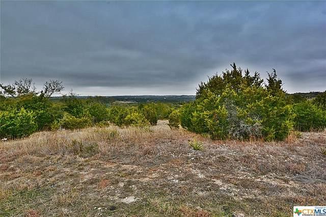 290 Stargrass, Spring Branch, TX 78070 (MLS #431813) :: Texas Real Estate Advisors