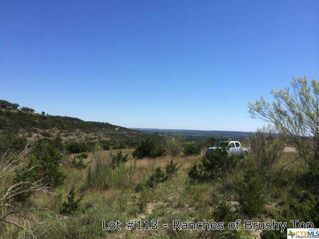 1176 Brushy Top Trail, Blanco, TX 78606 (#431905) :: Realty Executives - Town & Country