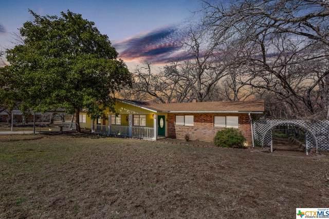 118 Chapparral Drive, Seguin, TX 78155 (MLS #431913) :: RE/MAX Family