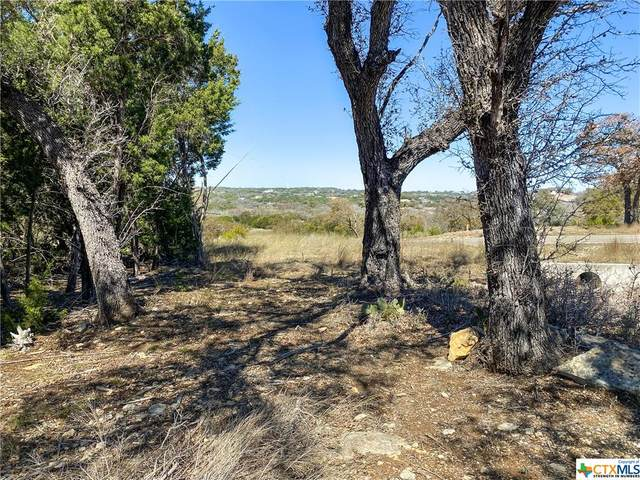 725 Caballo Trail, Canyon Lake, TX 78133 (MLS #432434) :: Texas Real Estate Advisors