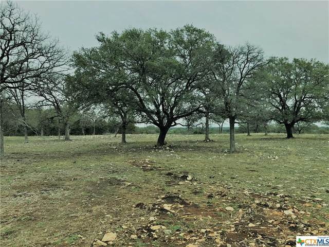 00 Private Road 4718, Kempner, TX 76539 (MLS #432531) :: Texas Real Estate Advisors