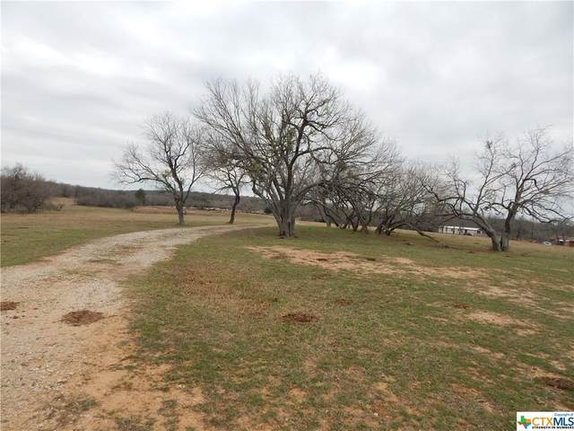 1214 S Sheffield Road, Seguin, TX 78155 (MLS #432730) :: Texas Real Estate Advisors