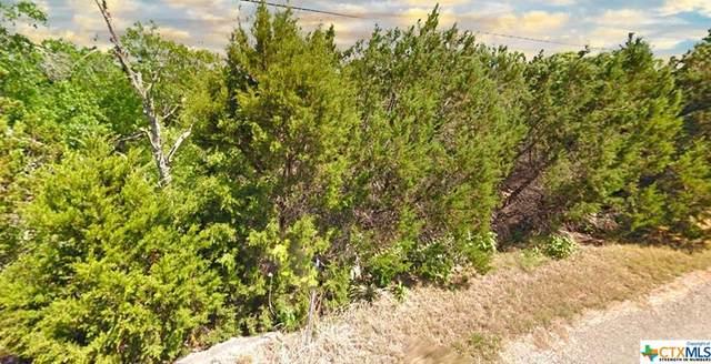 255 Delanoy Drive, Canyon Lake, TX 78133 (MLS #432764) :: Berkshire Hathaway HomeServices Don Johnson, REALTORS®