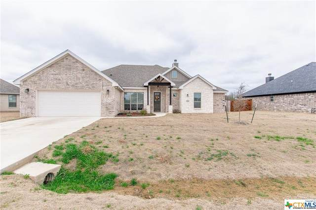 3845 Green Tree Loop, Temple, TX 76502 (MLS #433080) :: The Zaplac Group