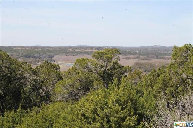228 Enigma Avenue, Spring Branch, TX 78070 (MLS #433117) :: Texas Real Estate Advisors