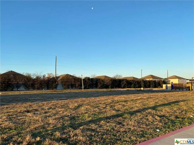 1314 W Stan Schlueter Loop, Killeen, TX 76549 (MLS #433123) :: Texas Real Estate Advisors