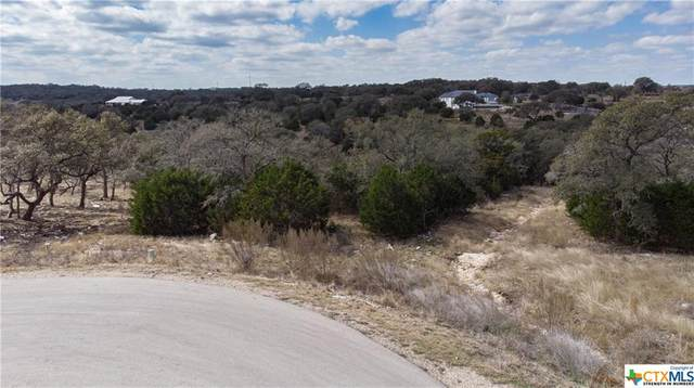 1534 Bolognese Road, New Braunfels, TX 78132 (MLS #433210) :: The Real Estate Home Team