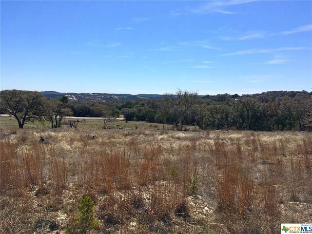 1404 Ensenada Drive, Canyon Lake, TX 78133 (MLS #433227) :: Texas Real Estate Advisors