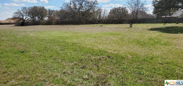 2104 Greenwillow Avenue, Killeen, TX 76541 (MLS #433441) :: Kopecky Group at RE/MAX Land & Homes