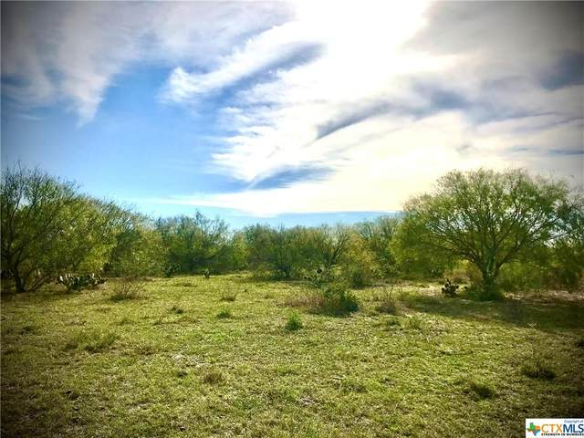 Lot 8 Hwy 281 So. Ben Bolt End Of Aransas Pass, Alice, TX 78332 (MLS #434180) :: Kopecky Group at RE/MAX Land & Homes
