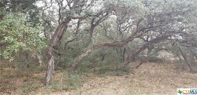 000 Grace Lane, Inez, TX 77968 (MLS #434327) :: Texas Real Estate Advisors