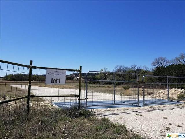 LOT 1 & 2 Cottonwood Mesa Drive, Kempner, TX 76539 (MLS #434835) :: Texas Real Estate Advisors