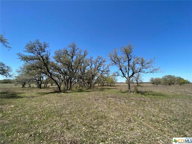 000 Prescott Road, Goliad, TX 77963 (MLS #434967) :: RE/MAX Land & Homes