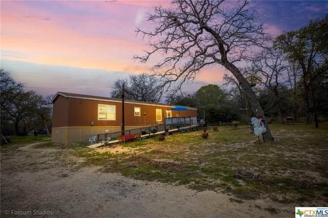 440 Blackjack Oak Road, Seguin, TX 78155 (#435088) :: Azuri Group | All City Real Estate