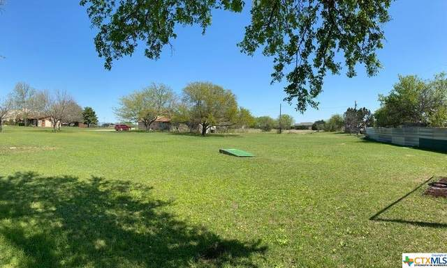 6217 State Highway 317, Belton, TX 76513 (MLS #435165) :: Kopecky Group at RE/MAX Land & Homes