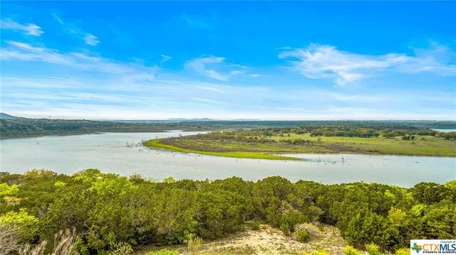 00 Pirtle Drive, Salado, TX 76571 (#435205) :: Realty Executives - Town & Country