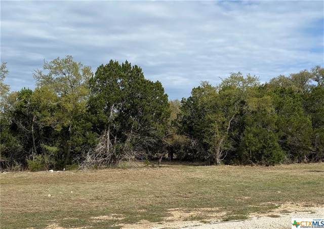 2124 Andalusia, Canyon Lake, TX 78133 (MLS #435286) :: Rutherford Realty Group