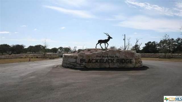 000 S Waterbuck Way, Lampasas, TX 76550 (MLS #435296) :: Texas Real Estate Advisors