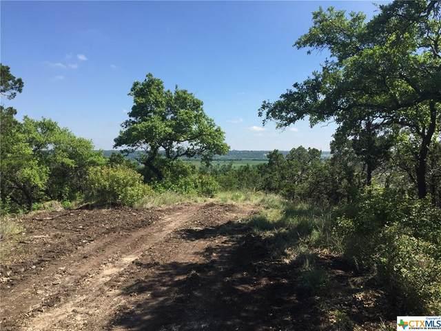 0000 Fm 439, Belton, TX 76513 (MLS #435297) :: Texas Real Estate Advisors